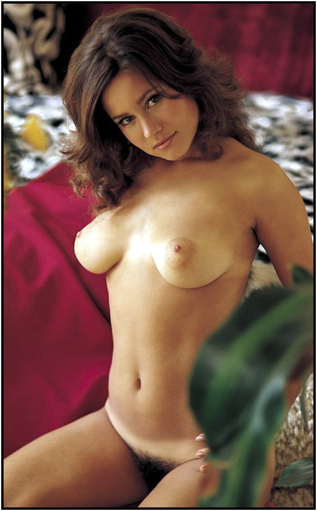 Necessary words... linda summers playmate sorry, this